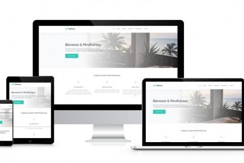 Desarrollo Web en Puebla de Zaragoza